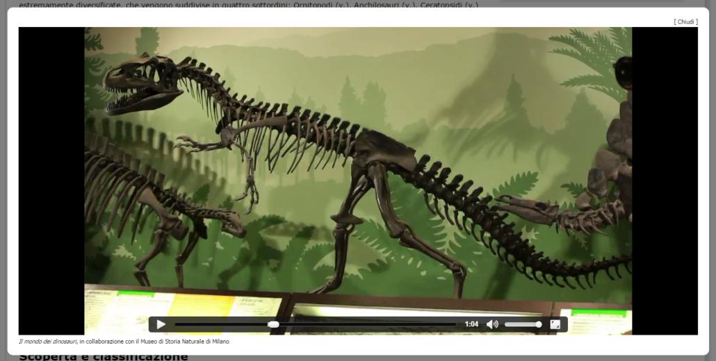 Video di approfondimento in collaborazione con il Museo di Storia Naturale di Milanp